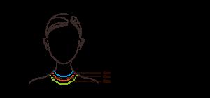 ネックレスの長さ比較